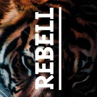 The Tiger Within - VISUAL STATEMENTS
